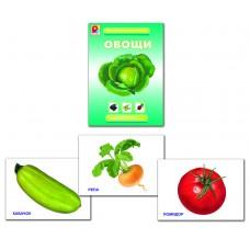 Овощи. Демонстрационный материал