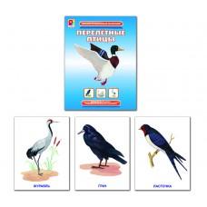 Перелётные птицы. Демонстрационный материал